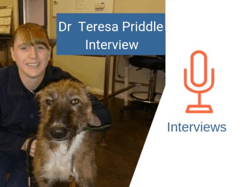 Petstock Mount Gambier Vet: Dr Teresa Priddle Interview