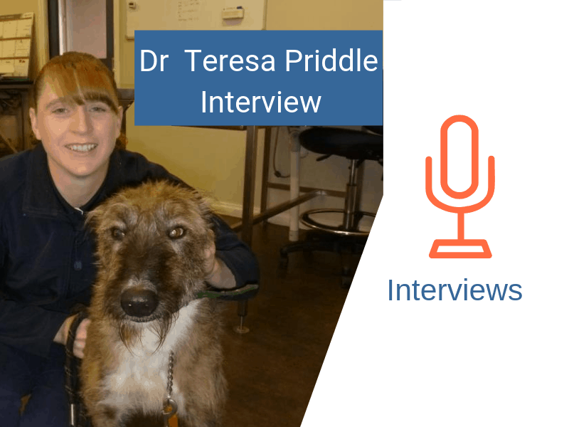 dr teresa priddle and a dog petstock mount gambier vet
