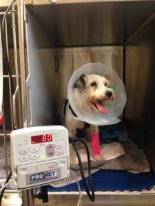intravenous fluid treatment