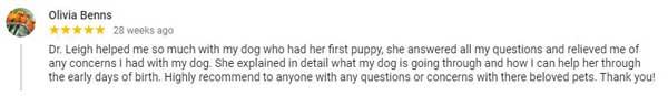 olivia benns 5 star google review