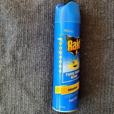 raid insect spray