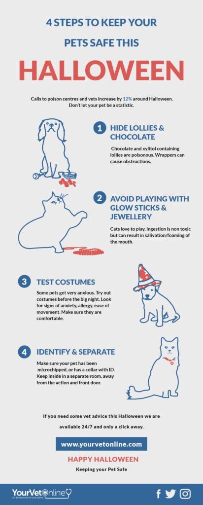 halloween top safety tips to keep your pet safe